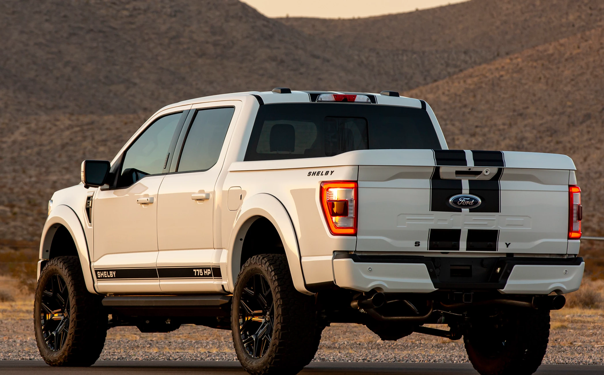 Shelby F150 2021 posteriore